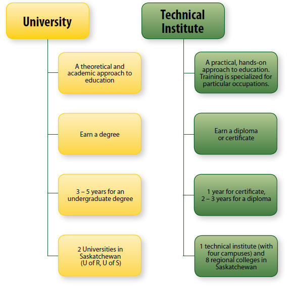 Software Engineering difference between school college and university