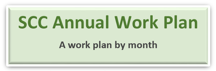 SCC Annual Work Plan.PNG