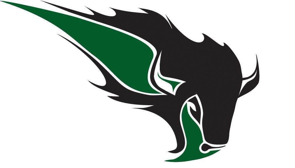 Meet our new school logo!