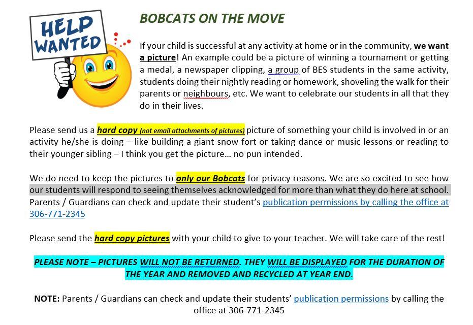 Bobcats on the Move.JPG