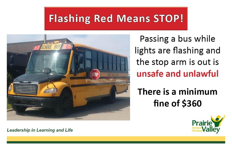 Bus Stop Arms.jpg