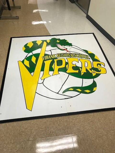 viper hard board.jpg